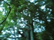 20060907(017)