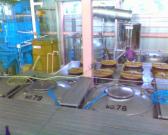 IMG00216