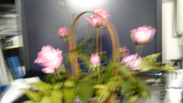 1/2010052016194400-DVC00005-small.jpg