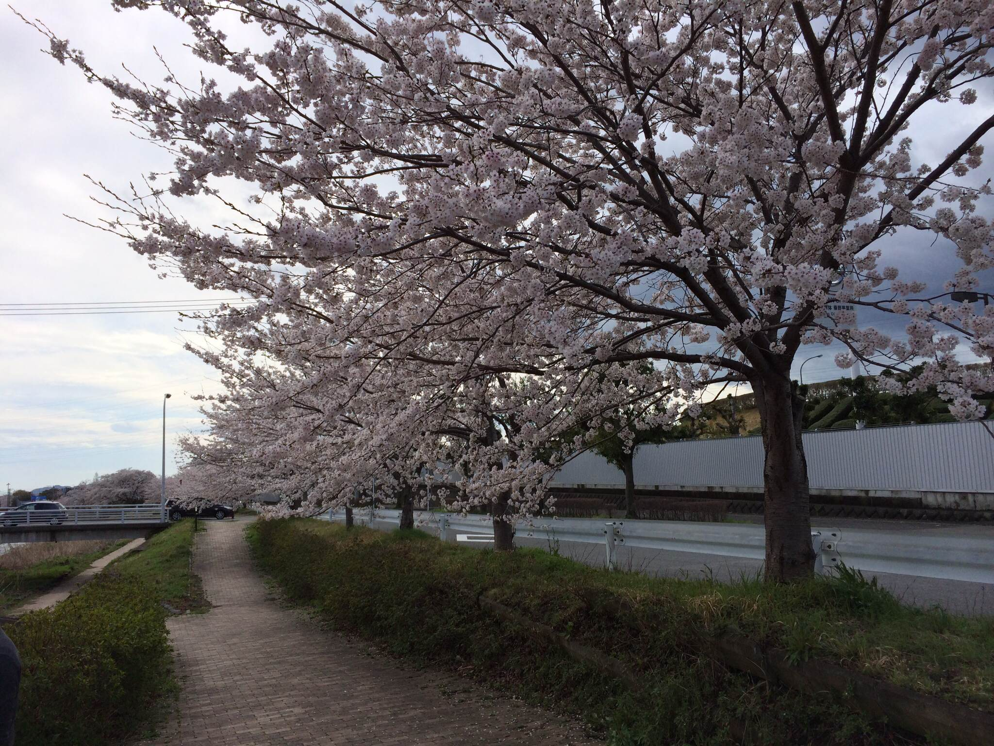 1/2014040418405000-photo1-small.jpg